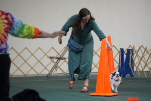 Hestia racing around a big orange cone