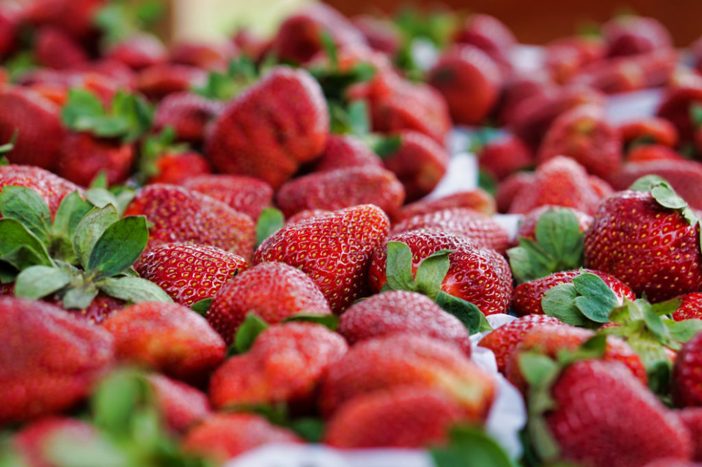 Closeup of a table full of strawberries!