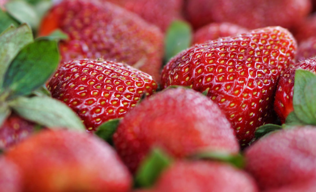 The strawberries are perfectly ripe and look luscious!