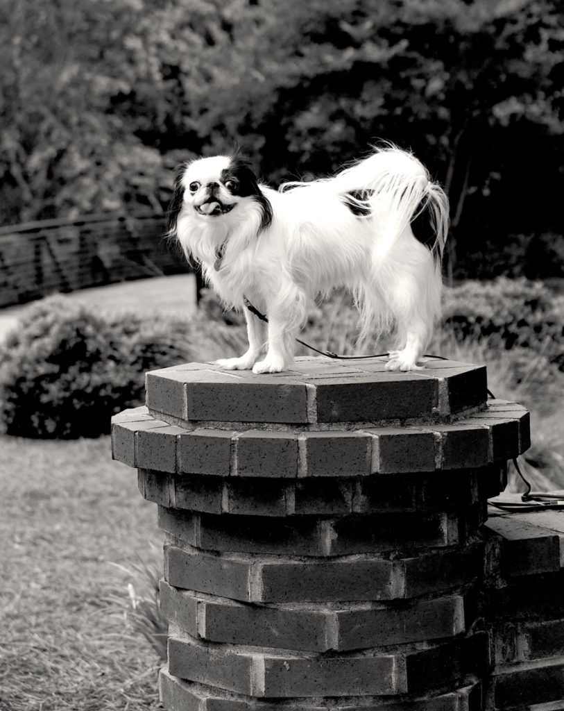 Black and white photo of Hestia on a small pillar.
