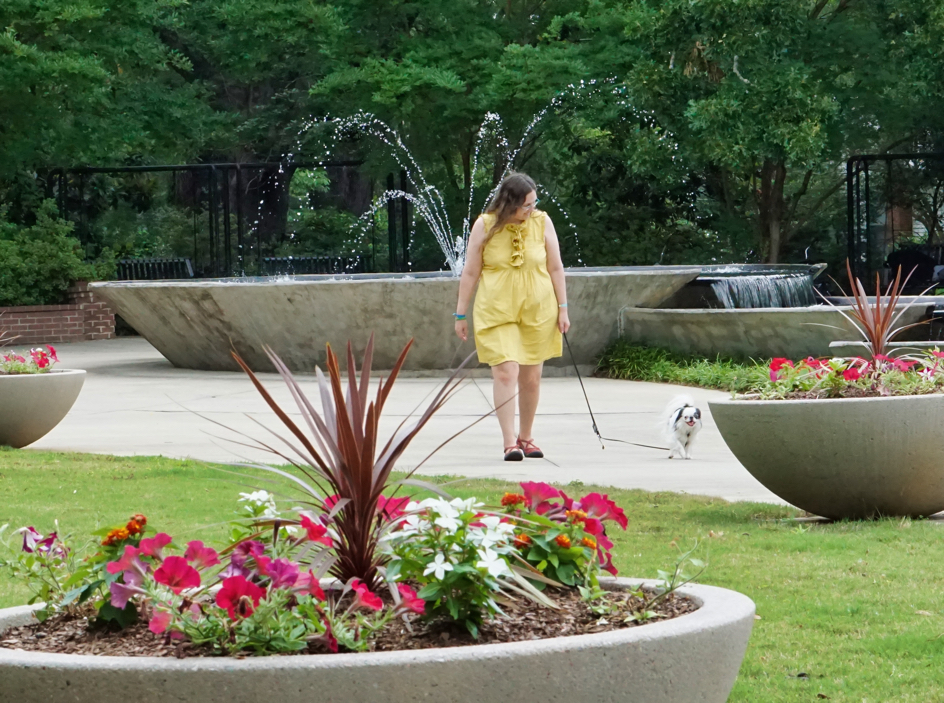 Veronica and Hestia walking away from a large fountain, towards Brad.