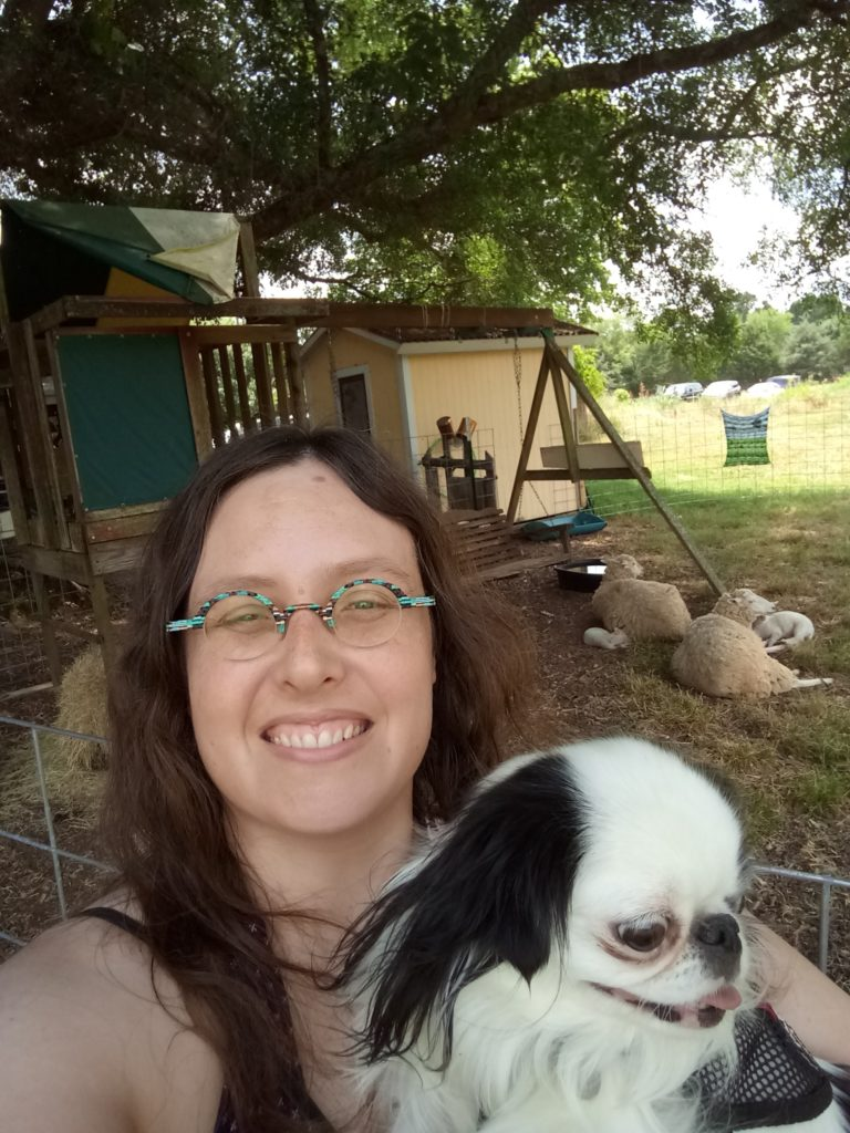 The selfie that Veronica was capturing on her phone.  This is Veronica's new phone, so the picture is actually good quality!  Veronica and Hestia stand in front of the sheepsies.