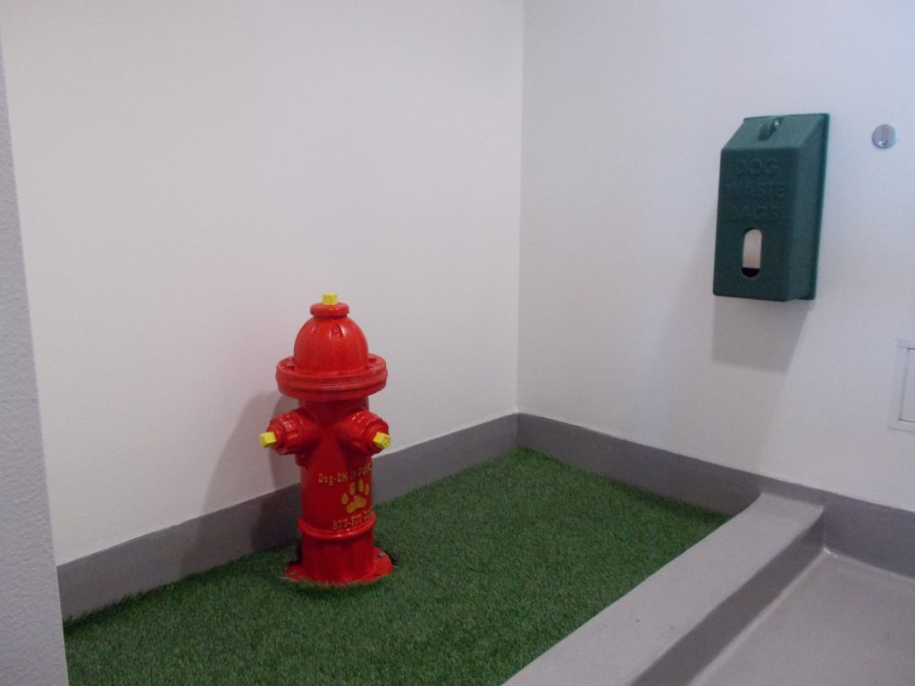 Indoor pet relief area in San Diego, California.  A small room has a portion of the room with a short 6 inch wall separating the concrete floor from the fake grass.  There is a 4x8 ft or so fake grass area with a red plastic fire hydrant in the middle.  There is an 8-inch gray vinyl molding along the base of the wall, which might absorb pee smell over time and is definitely not high enough for high-urinators.  Poop bags are on the wall.