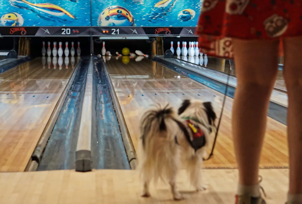 Hestia is out of focus in this picture at the bowling alley.  In focus beyond her, a yellow bowling ball knocks down all but one pin!
