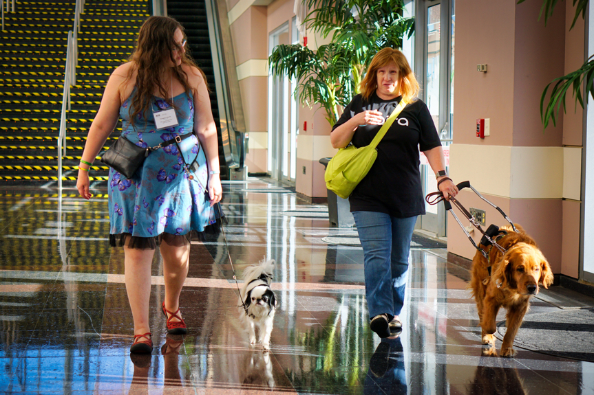 Veronica is wearing a blue butterfly dress with red shoes, and Hestia is a small black and white Japanese Chin heeling next to her.  Veronica looks at Jenine, who has red hair and is wearing an Aira t-shirt, as her red Golden Retriever Roger leads her along.