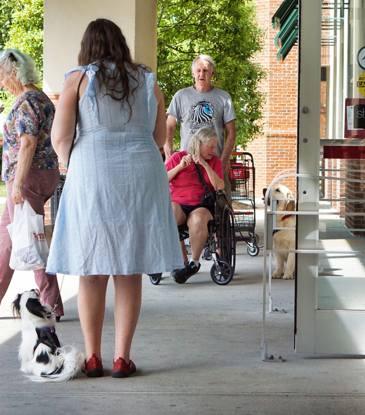Veronica, a woman with long brown hair wearing a light blue lacey dress, has her back to the camera.  Hestia, a small black and white dog wearing her purple mesh vest, sits next to Veronica, looking up at her.  About 10 feet away Mick, a man with long white hair and a grey shirt, stands behind Barbara's wheelchair.  Barbara, a woman with short grayish-blond hair and a pink shirt, is looking at her Golden Retriever puppy Tripper, who has a blue vest on.