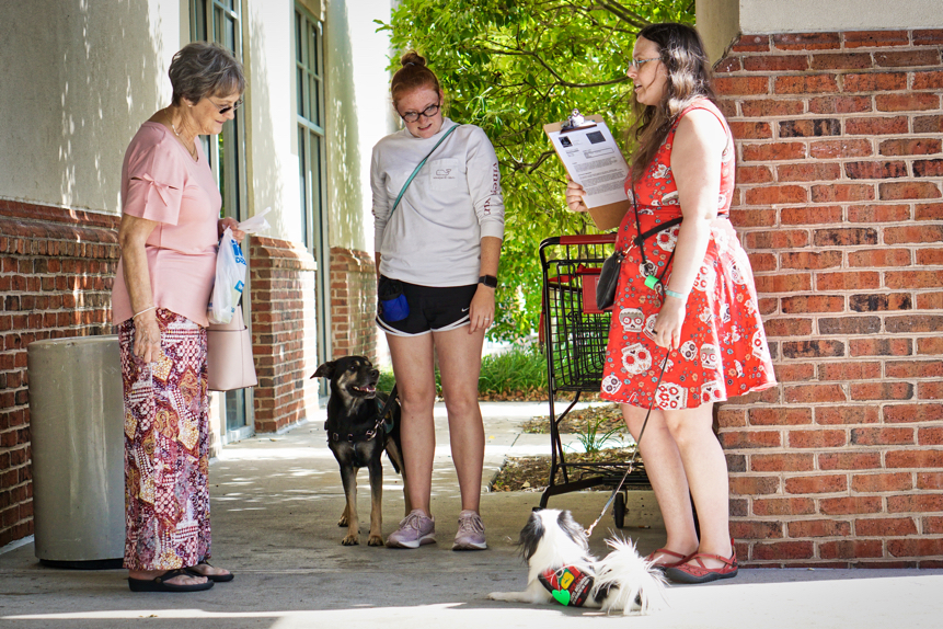 A stranger dressed in pink talks with Veronica and Cynthia about their service dogs.  Hestia lies on the ground and Kilo looks bored.
