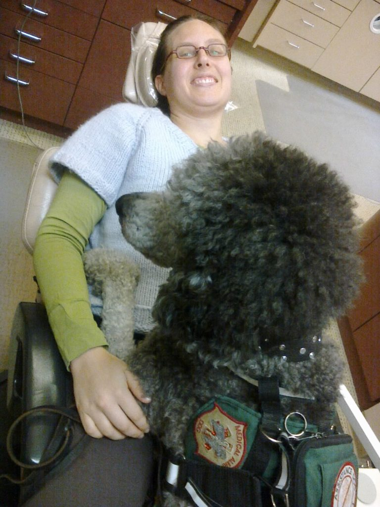 65 pound poodle Ollie lies on Veronica's lap while she is in the dentist's chair.