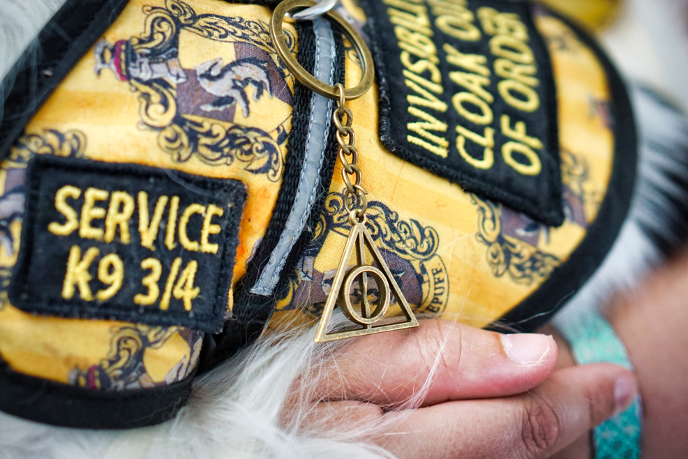 "A closeup of Hestia's Hufflepuff vest.  You can read one patch saying ""service k9 3/4"" and see a Deathly Hallows keychain hanging off of the middle ring of the vest."