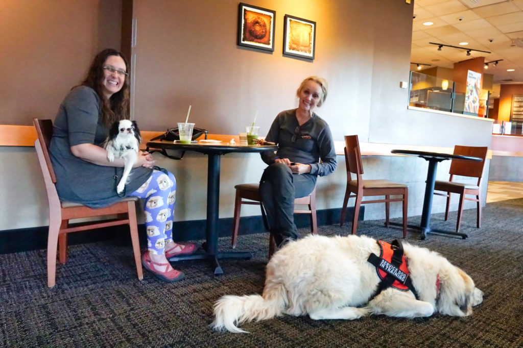 At Panera, Hestia lies on Veronica's lap.  Phyllis smiles at the camera, while Avalanche lies next to her chair.