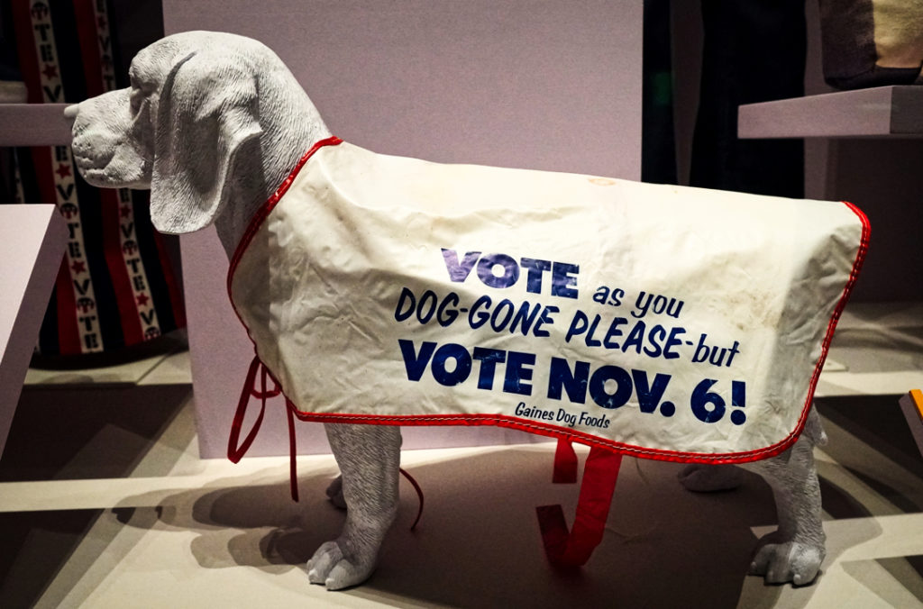 """A dog coat that says """"vote as you dog-gone please, but vote Nov 6!"""""""