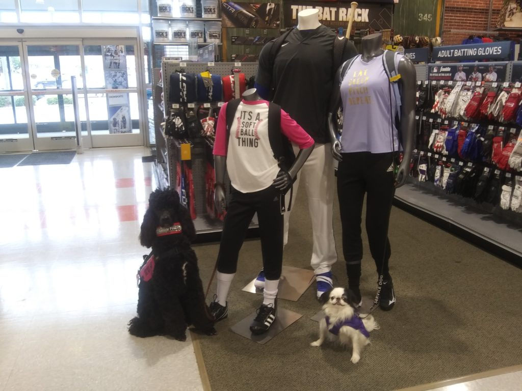 Hestia and Phoebe pose with some mannequins in Dick's.  If you look closely, you'll see that the mannequins are holding the dogs' leashes!
