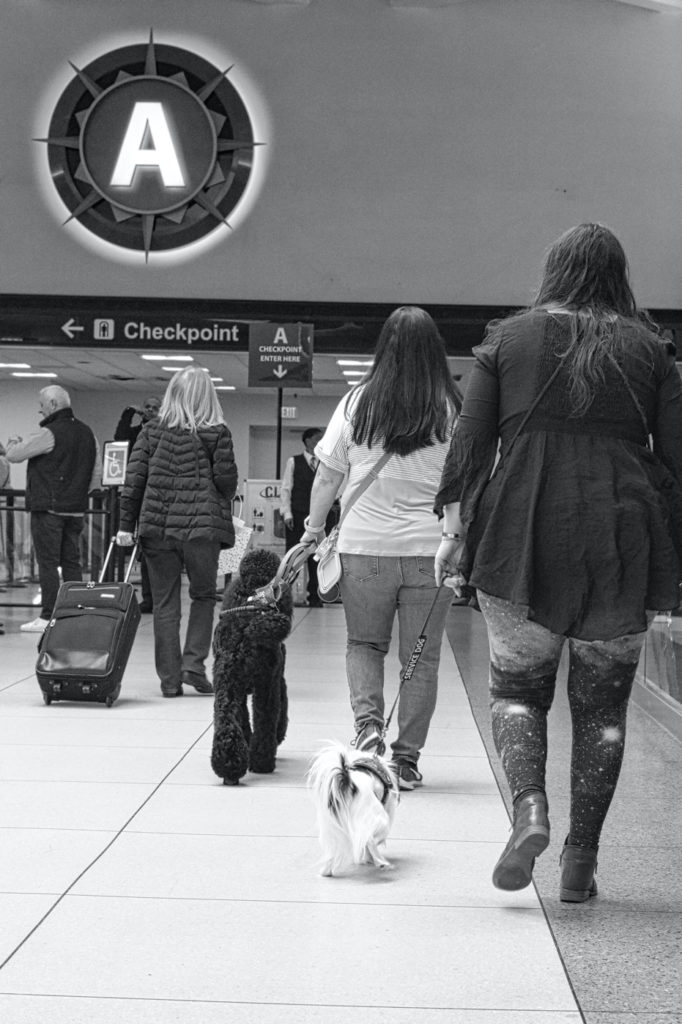 Black and white photo of Veronica with Hestia and Tammy with Phoebe heading off towards the security screening area.