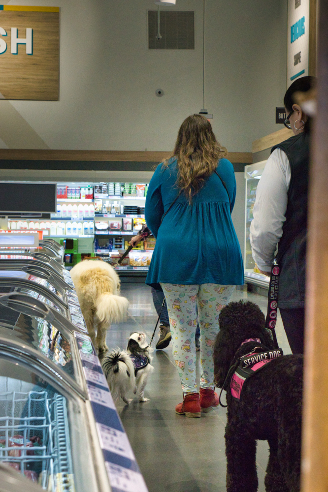 From behind, Tammy with Phoebe, Veronica with Hestia, and Phyllis with Avalanche walk through the frozen section right next to the hip-height freezers.