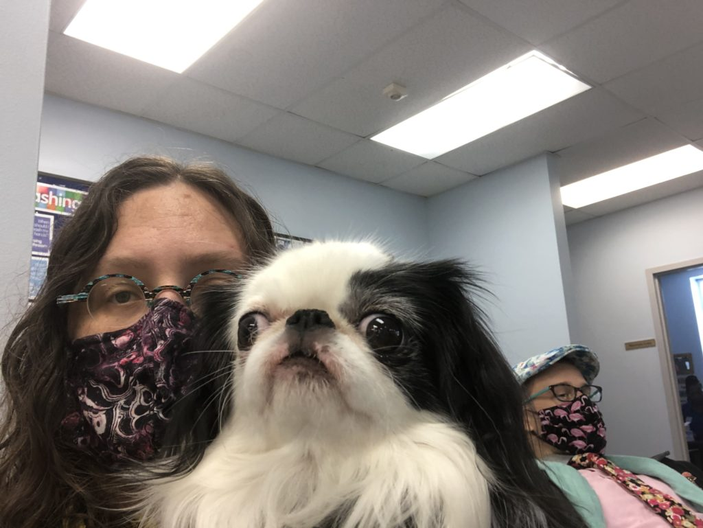 Picture of a woman with long brown hair wearing a pink and purple and black mask holding a small white and black dog with a smushed nose and googley eyes.  In the background over the woman's shoulder you can see a man wearing a pink flamingo mask, a pink shirt, an aqua green scarf, a pink flower tie, and a white and blue hat with flowers.