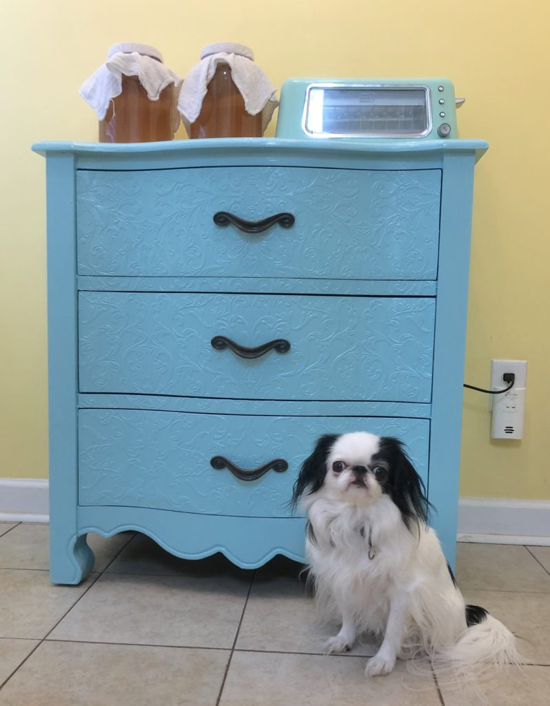 Hestia, a small white and black dog with a smushed nose and googley eyes, sits in front of the dresser.